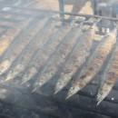 東京でも有名な大船渡のサンマ