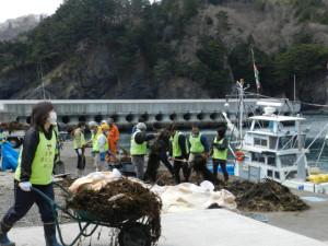 仮宿漁港の清掃